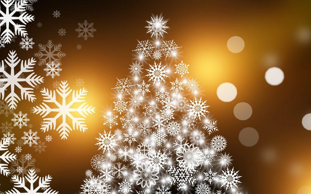 """Bürger spenden Weihnachtsbäume – Die Bürgermeisterin sagt """"Danke!"""""""