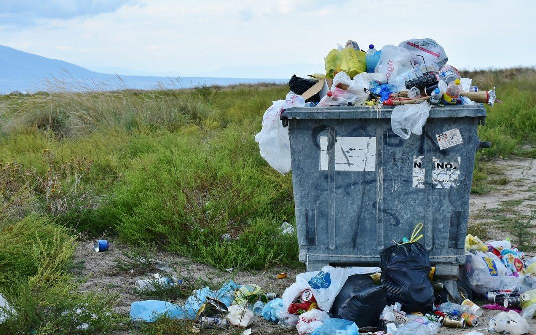 """""""Wilder Müll"""" – das Problem nimmt zu"""